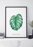 MONSTERA WHITE, POSTER