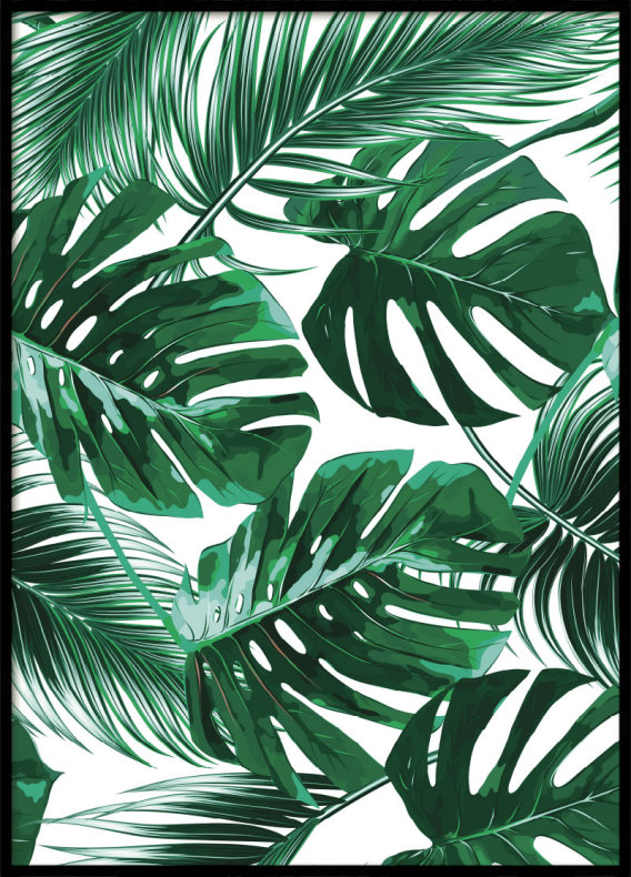 Monstera Leaves, Poster