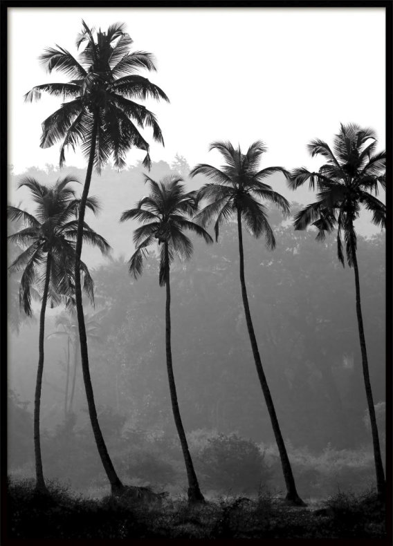 Palm trees poster fashion print posters prints online archiveseven com