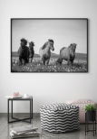 Horses, Poster