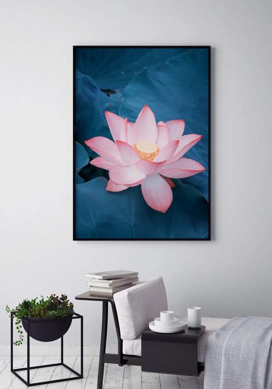 Lotus Flower Poster Posters Prints Online Archiveseven
