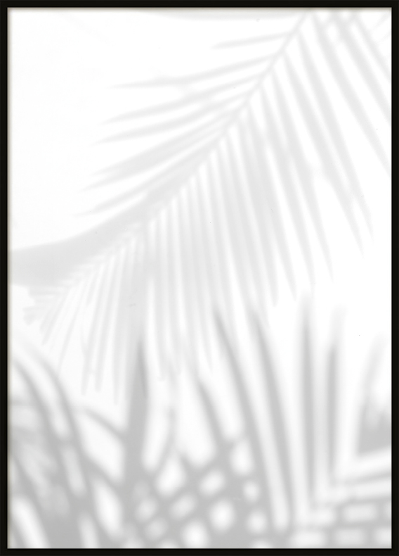 Poster, Grey Palms 2