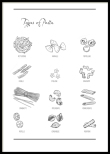 Types of Pasta, Poster