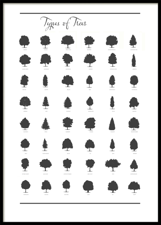 Tree, Poster