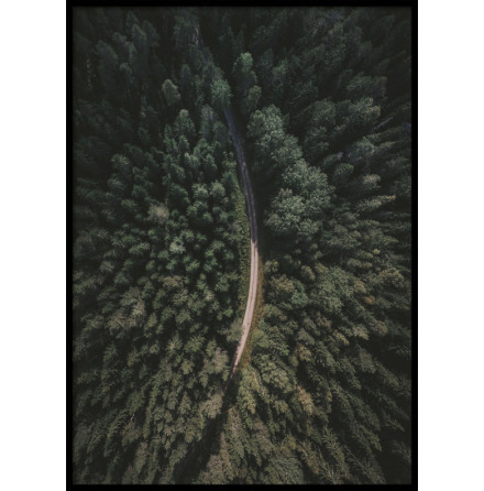 Poster, Forest Road II