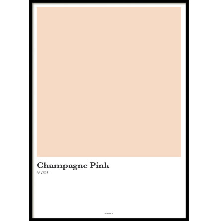 CHAMPAGNE PINK, POSTER