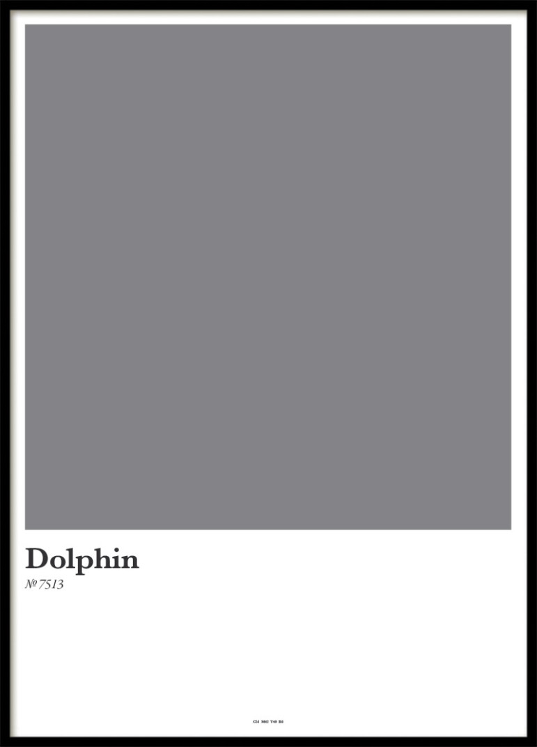 DOLPHIN, POSTER