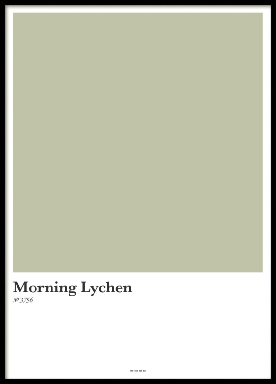 MORNING LYCHEN, POSTER