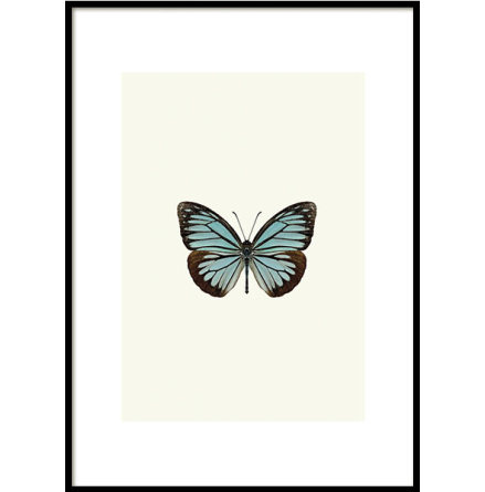 LITTLE BUTTERFLY BLUE, POSTER