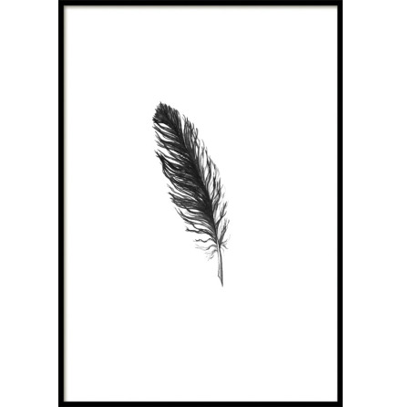 Feather, Poster