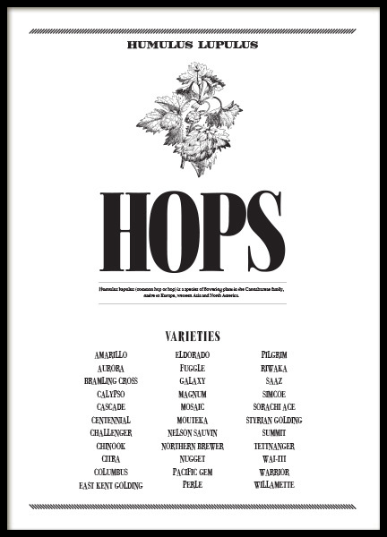THE HOPS, POSTER