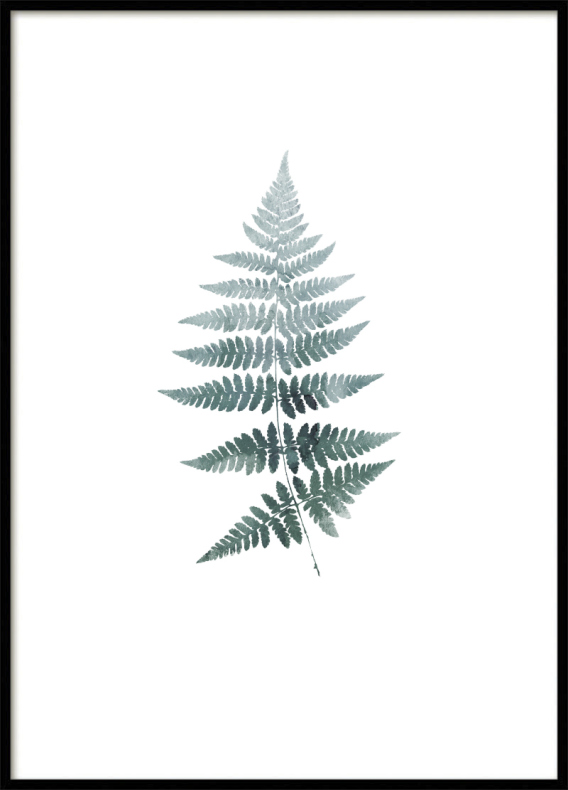 Fern watercolor Poster blue