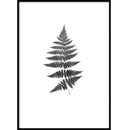 Fern watercolor Poster black